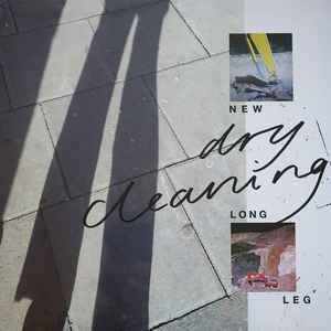 New Long Leg (Vinyl, LP, Album) album cover