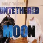 Built-To-Spill-Unethered-Moon-Artwork.jpg